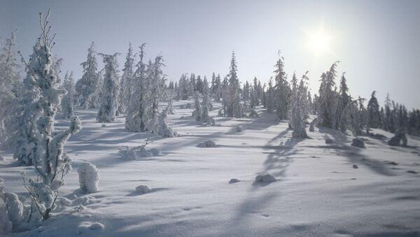 Zima. Ilustrační foto - Sputnik Česká republika