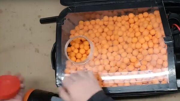 20 výstřelů za jednu vteřinu: jak změnit hračku na kulomet. Video - Sputnik Česká republika