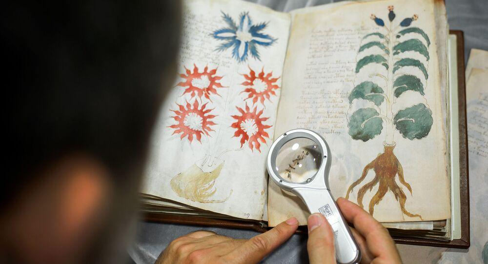 Voynichův rukopis