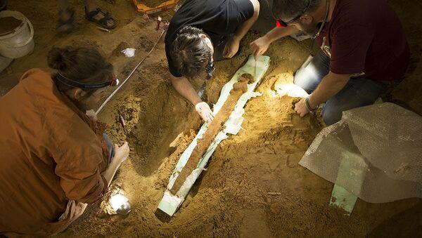 Byl nalezen meč, kterým před tisícem let bojovali ruští vojíni - Sputnik Česká republika