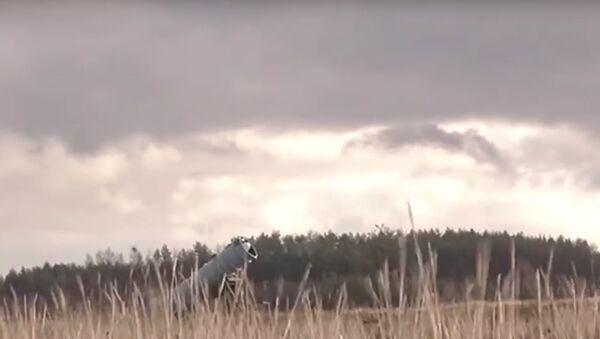 Na Síti si všimli shody mezi novou ukrajinskou raketou a sovětským Uranem - Sputnik Česká republika