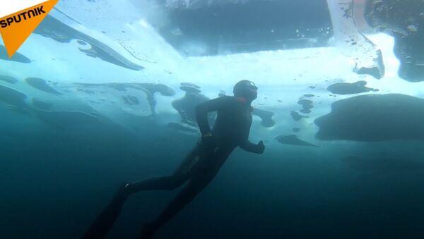 Potápěč plave pod ledem bez jakéhokoli přístroje - Sputnik Česká republika