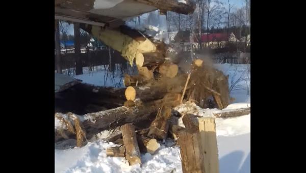 Chlapec seká strom sekerou - Sputnik Česká republika