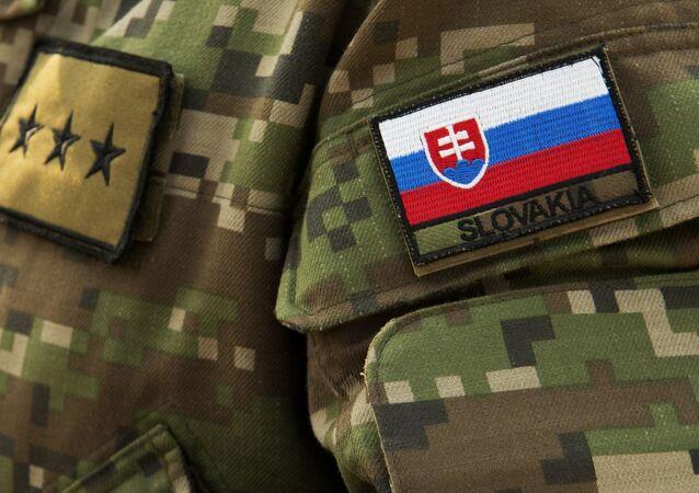 Slovenský voják. Ilustrační foto