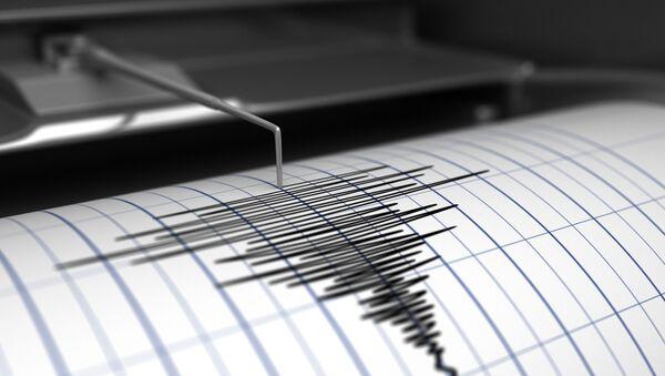 Seismograf - Sputnik Česká republika