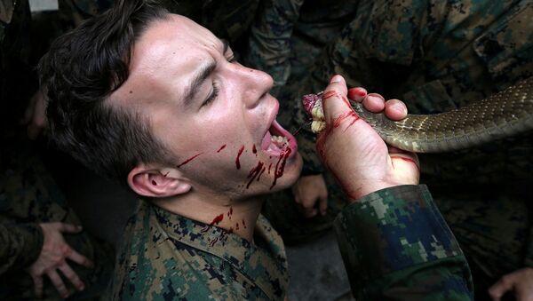 Američtí vojáci pijí krev kobry - Sputnik Česká republika