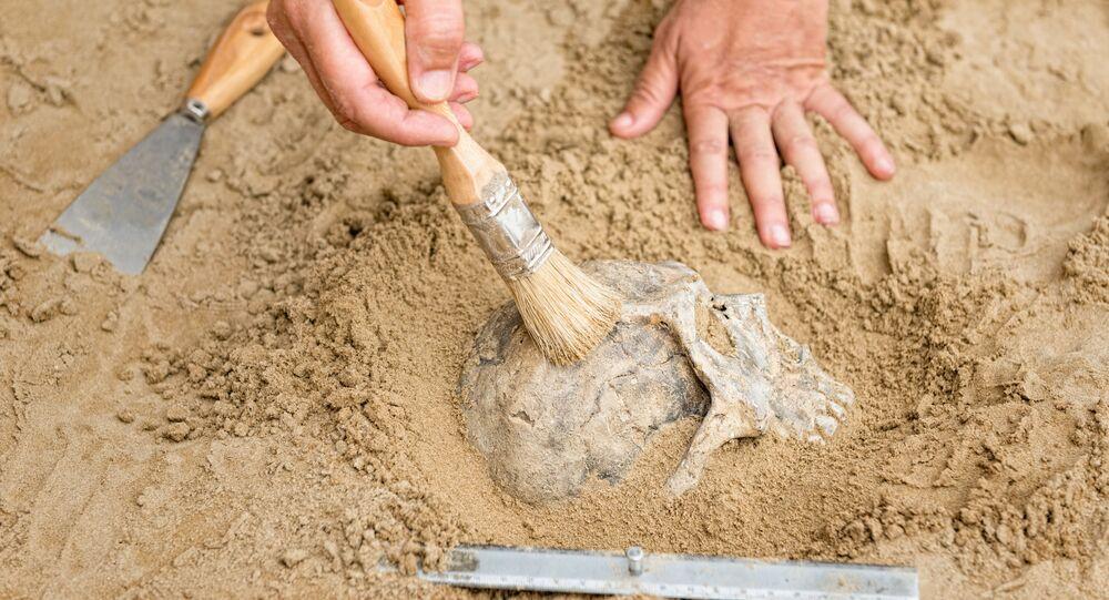 Archeolog na místě vykopávek