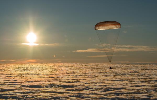 Tento týden v obrázcích: pozoruhodné okamžiky na různých místech - Sputnik Česká republika