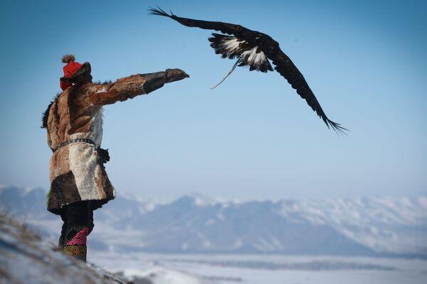 Jarní festival sokolnictví v Mongolsku - Sputnik Česká republika