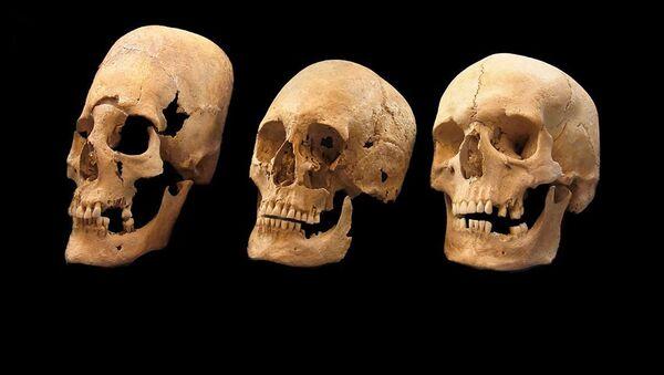 Lebky, které byly nalezeny v Bavorsku - Sputnik Česká republika