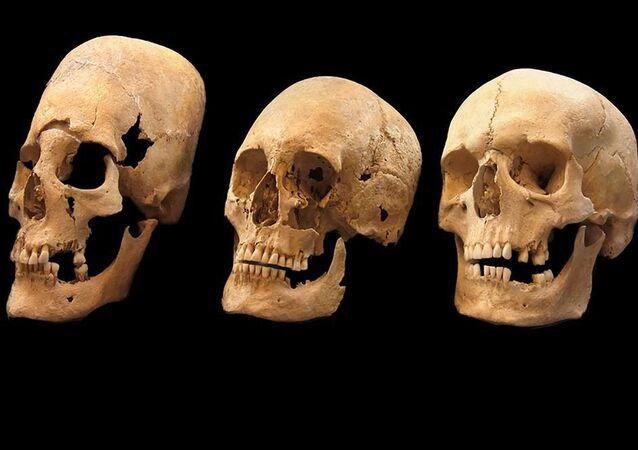 Lebky, které byly nalezeny v Bavorsku