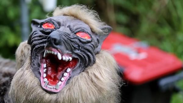 Japonsko připravuje robota Super Monster Wolf na ochranu své úrody od divočáků - Sputnik Česká republika