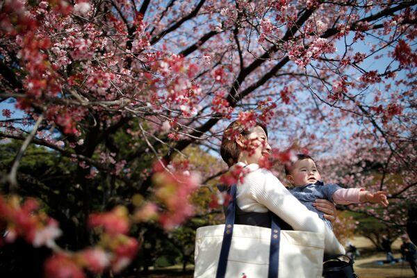 Matka s dítětem se dívají na předčasně kvetoucí sakuru v Národním parku Shinjuku Gyoen v Tokiu, 14. března 2018 - Sputnik Česká republika