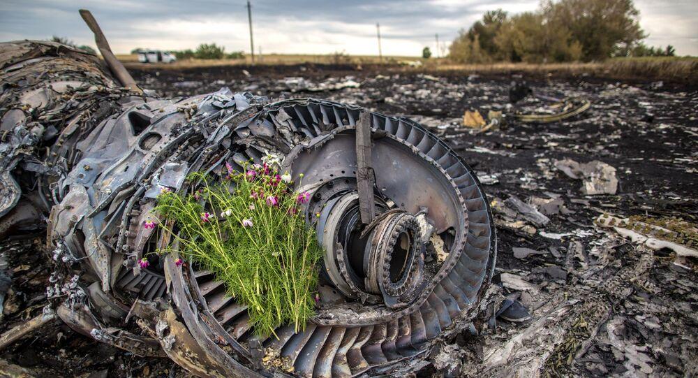 Trosky Boeingu 777, který se zřítil na Donbasu