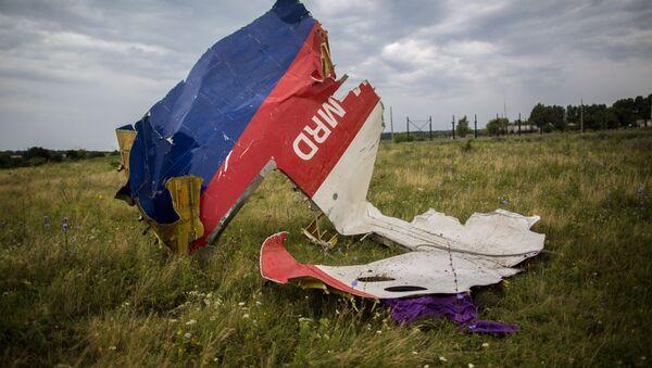 Fragmenty boeingu 777 nedaleko vesnice Šachtjorsk - Sputnik Česká republika