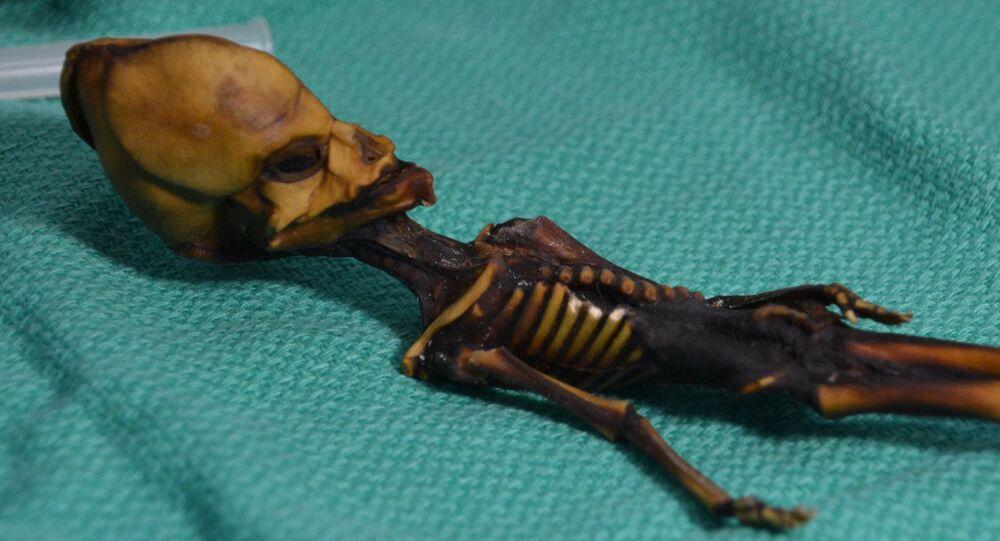 """Bylo odhaleno tajemství """"mimozemského"""" humanoidu z Atacamy"""