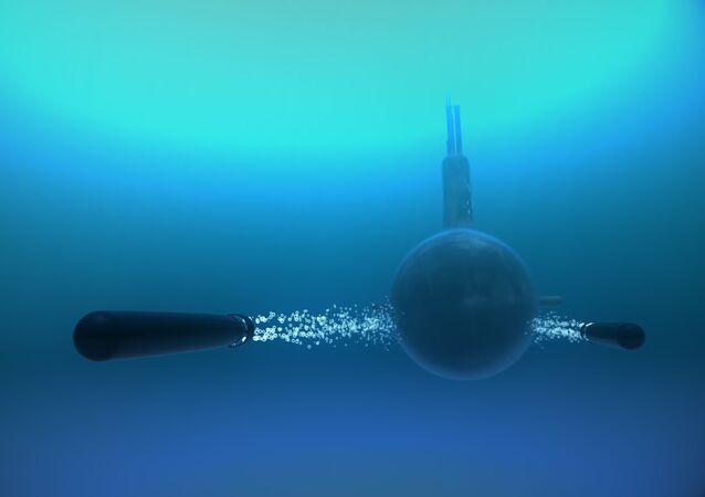 Ruské torpédo 65-76A Kit (Velryba) ráže 650 milimetrů