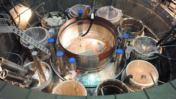 Jaderný reaktor. Ilustrační foto - Sputnik Česká republika