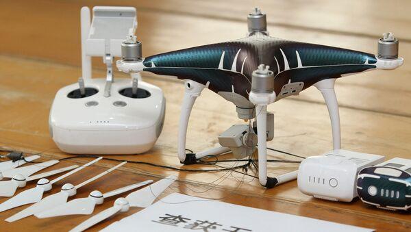 Jeden ze zadržených dronů - Sputnik Česká republika
