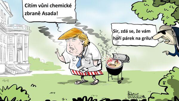 V Sýrii to zavání pečením - Sputnik Česká republika