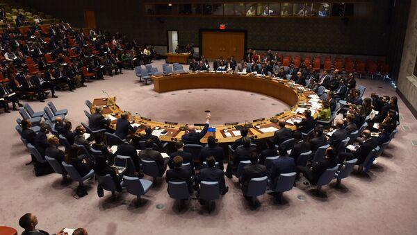 Zasedání 11. dubna v Radě bezpečnosti OSN - Sputnik Česká republika