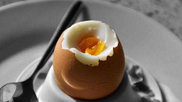 Vařené vajíčko - Sputnik Česká republika
