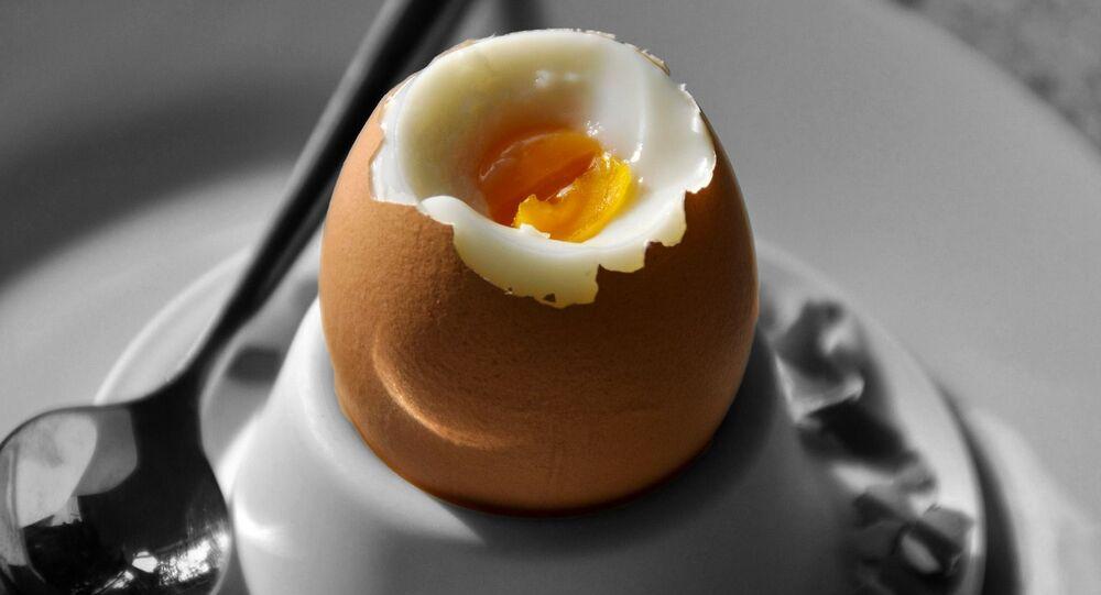 Vařené vajíčko