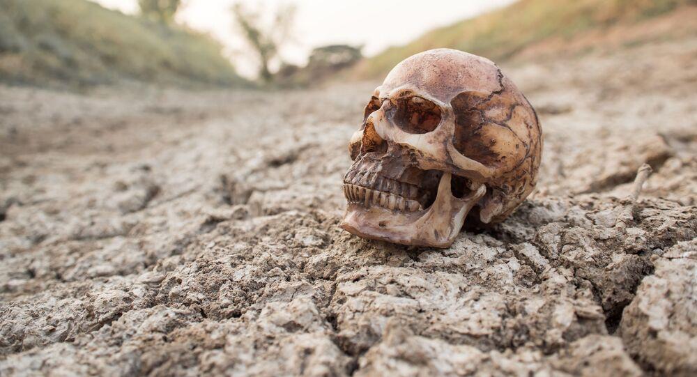Lebka na suché půdě