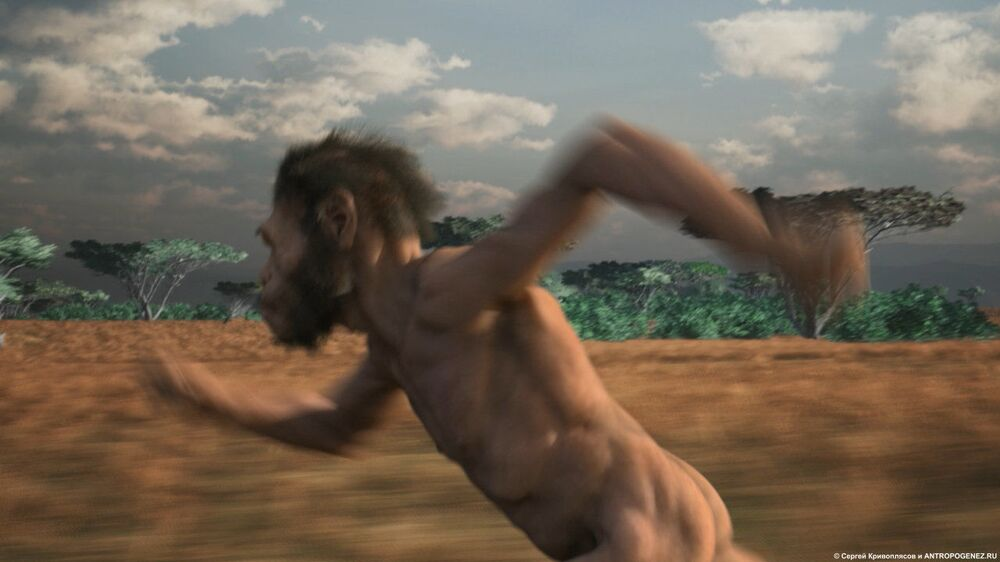 Zemřel ve staré jeskyni, ožil v Moskvě ve XXI. století: Zázračný osud Homo naledi