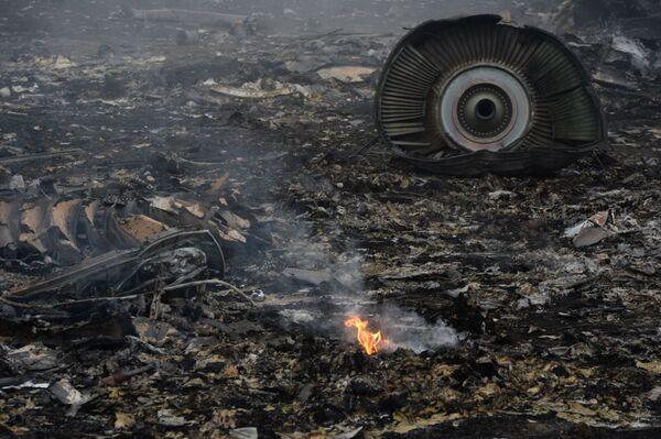 Uplynul rok po katastrofě Boeingu MH17 u Doněcka - Sputnik Česká republika
