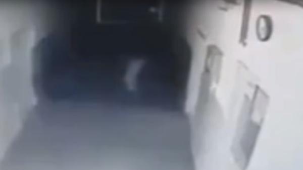 Srbka si postěžovala, že ji sledují, ale záznamy z kamer policii šokovaly - Sputnik Česká republika