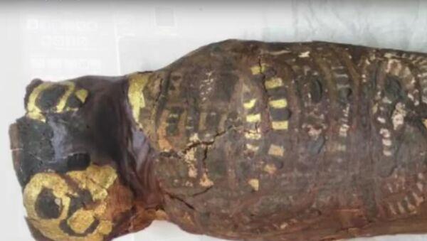 Bylo odhaleno tajemství maličké egyptské mumie (VIDEO) - Sputnik Česká republika