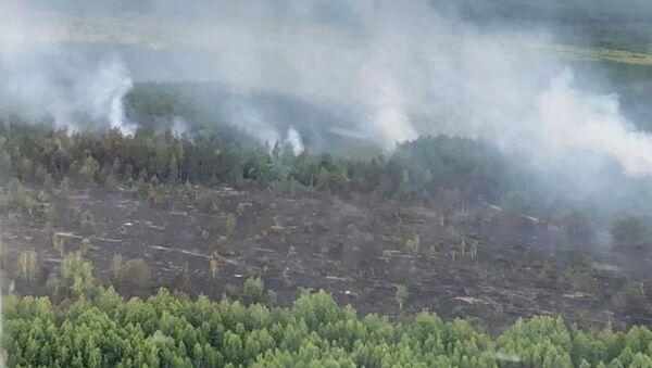 Tráva hoří v černobylské zakázané zóně - Sputnik Česká republika