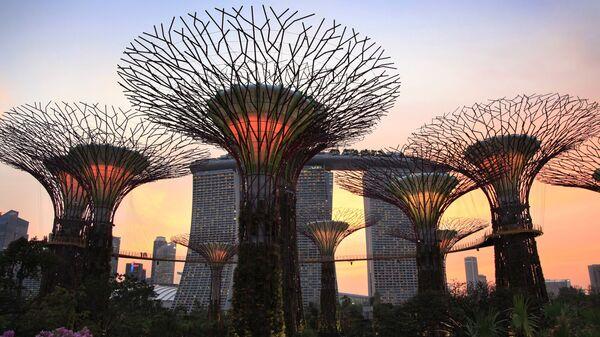 Super stromy, Singapur - Sputnik Česká republika