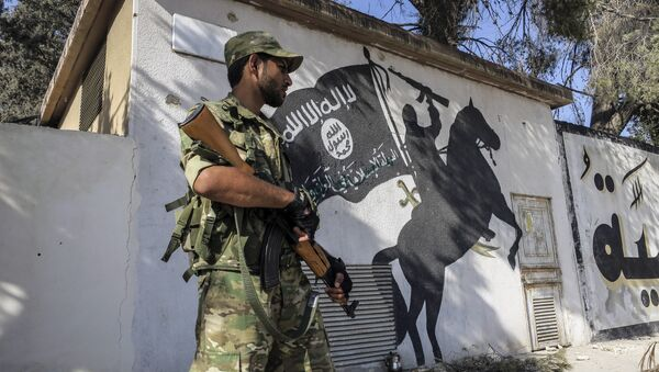 A Free Syrian Army fighter stands in front of a painting left by IS militants in Jarablus, Syria (File) - Sputnik Česká republika
