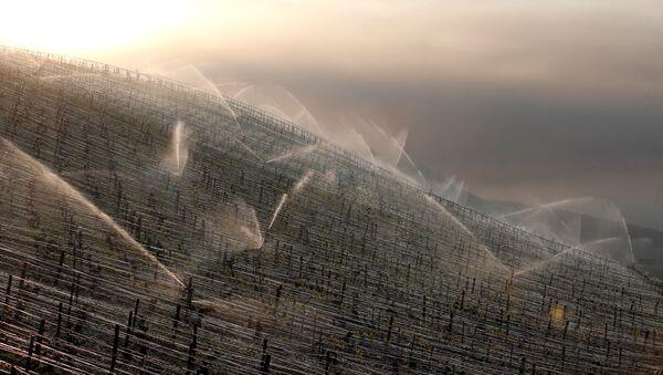 Systém zavlažování. Ilustrační foto - Sputnik Česká republika