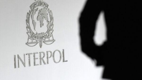 Logo Interpolu - Sputnik Česká republika