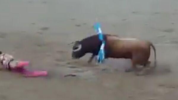 Ve Španělsku býk skalpoval toreadora (VIDEO) - Sputnik Česká republika