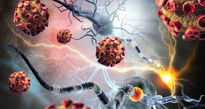 rakovinové buňky