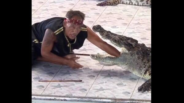 Útok krokodýla na krotitele v Thajsku - Sputnik Česká republika