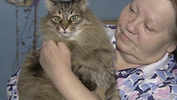 Toto je ale skutečná hrdinka! Kočka zachránila nemluvně před smrtí - Sputnik Česká republika