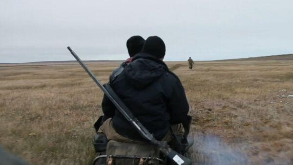 Jak se v Rusku hledají kly mamutů - Sputnik Česká republika