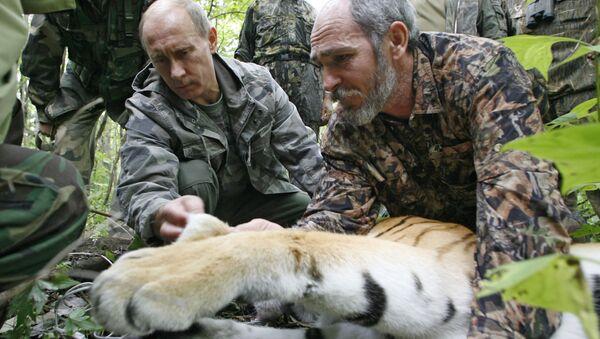 Vladimir Putin v Ussurijské rezervaci na Sibiři - Sputnik Česká republika