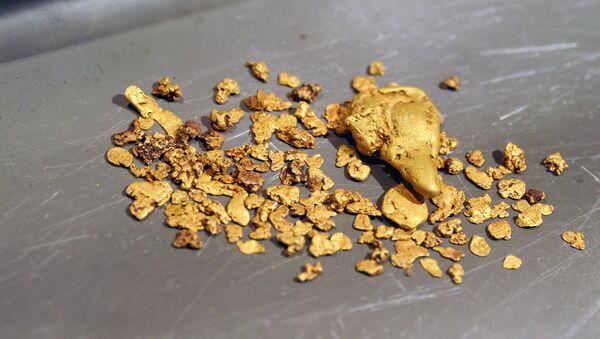 Těžba zlata - Sputnik Česká republika