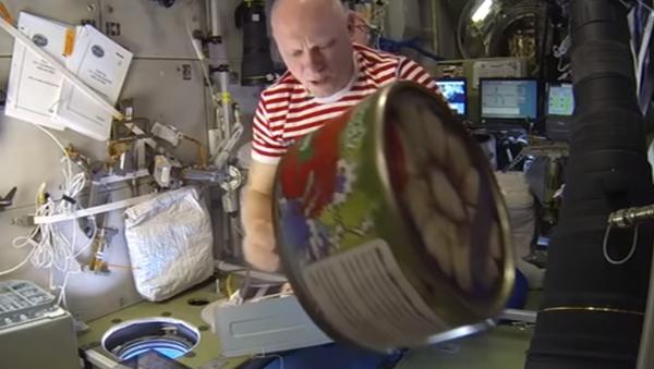 Ruský tvaroh zvítězil nad americkou částí ISS - Sputnik Česká republika