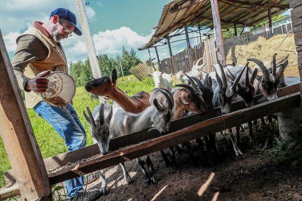 Jak se Američan v Rusku stal farmářem - Sputnik Česká republika