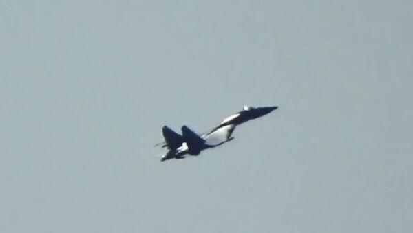 Ladný let Su-35S na minimální rychlosti (VIDEO) - Sputnik Česká republika