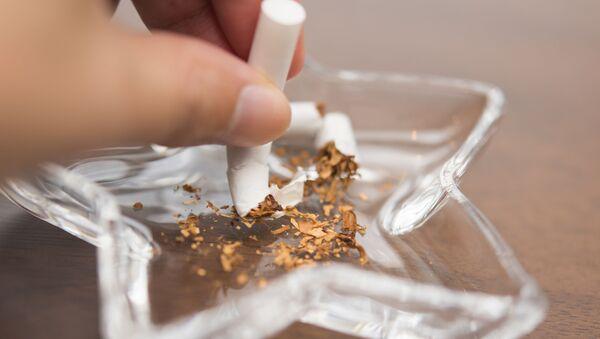 Cigareta v popelníku. - Sputnik Česká republika