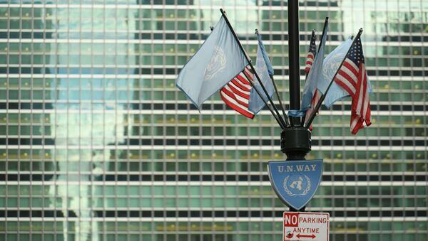 Vlajky USA a OSN - Sputnik Česká republika