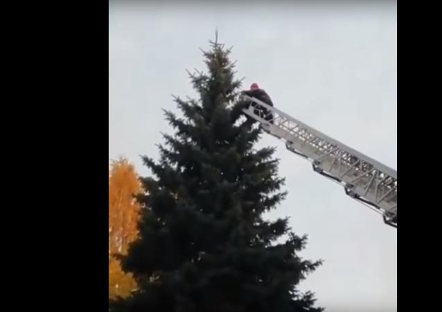 Ruští záchranáři vysvobodili zahraničního studenta z vrcholku smrku